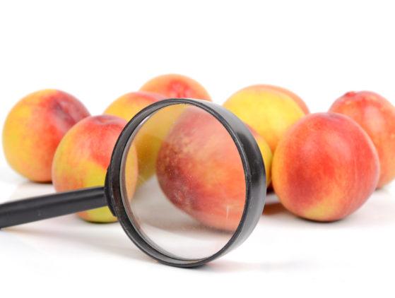 Documentación que debe acompañar a las partidas de productos alimenticios